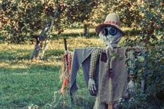 Lantgårdfågelskrämma Royaltyfri Bild