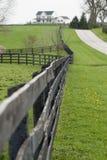 lantgårdhäst kentucky Arkivfoton