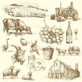 Lantgårdsamling Arkivbild