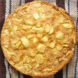 Lantlig äppelpaj Royaltyfri Fotografi