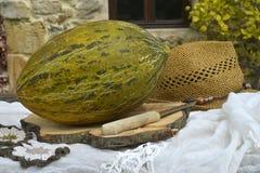 Lantlig bakgrund för melon Fotografering för Bildbyråer