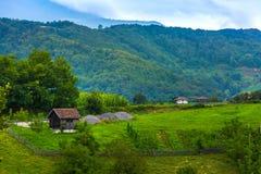Lantlig borggård i bergen av Valjevo, Serbien Royaltyfri Foto