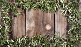 Lantlig brädebakgrund för Olive filialer Arkivbilder