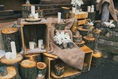 Lantlig bröllopdekor, trappa med dekorerade stubbar och askar Royaltyfri Foto