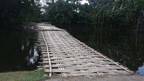 lantlig bro Arkivfoton