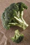 lantlig brun grön head hessian för broccoli royaltyfria bilder