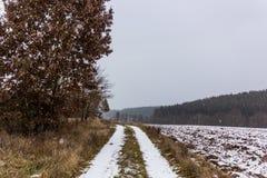 Lantlig bygdväg på en vinterdag med fält och snö Arkivbilder