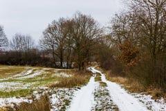 Lantlig bygdväg på en vinterdag med fält och snö Fotografering för Bildbyråer