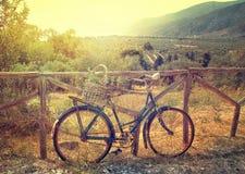 Lantlig cykel för tappning med korgen Royaltyfria Bilder
