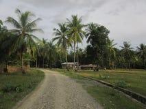 Lantlig grusväg i Este Timor Fotografering för Bildbyråer