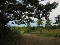 Lantlig grusväg i Este Timor Royaltyfri Bild