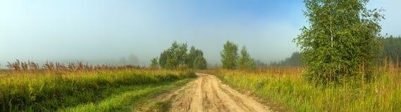 Lantlig höstlandskappanorama med vägen, dimma, fält, träd Royaltyfri Bild