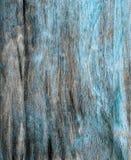 Lantlig hardboardtextur med blått skalad målarfärg Royaltyfria Bilder