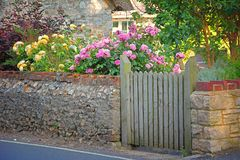 Lantlig hus- och stenvägg, blommande rosor bakom Royaltyfria Bilder