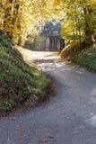 Lantlig husplats för höst Ensamt hus i höstskogsikt Sunnny dag med ljus dimma arkivfoton