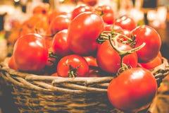 Lantlig korg av nya organiska tomater på mörk bakgrund i bondemarknad Arkivbild