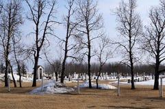 Lantlig kyrkogård med spöklika träd Arkivbild