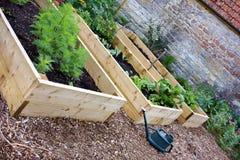 Lantlig landsgrönsak- & blommaträdgård med lyftta sängar Fotografering för Bildbyråer