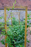 Lantlig landsgrönsak- & blommaträdgård med lyftta sängar och ram för att klättra växter Royaltyfri Fotografi