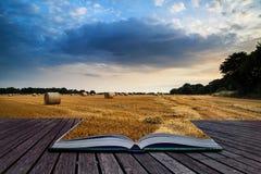 Lantlig landskapbild av sommarsolnedgången över fält av höbaler c Arkivfoton