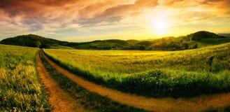 Lantlig landskapsolnedgångpanorama arkivfoto