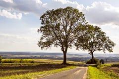 Lantlig lansdscape nära Coburg Royaltyfria Bilder