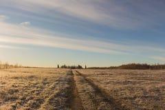 lantlig liggande Härlig vinter över snöig fält Arkivfoto