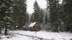 lantlig liggande lyckligt nytt år Djupfrysta mycket härliga träd Vintersaga lager videofilmer