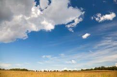 Lantlig liggande med det torra fältet under den härliga skyen Fotografering för Bildbyråer