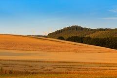lantlig liggande Rheinland-Pfalz Tyskland Fotografering för Bildbyråer