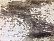 Lantlig målad wood texturbakgrund Royaltyfria Foton