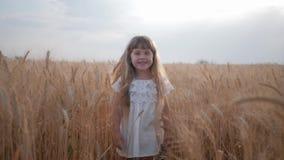 Lantlig nätt gullig lite flicka i den vita klänningen som är trött av att spela i ett moget vetefält bland öron av korn lager videofilmer