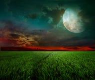 Lantlig natt med moonen Royaltyfri Fotografi