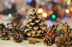 Lantlig naturlig träbakgrund med kottar Royaltyfria Foton
