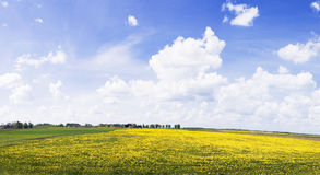 lantlig panorama Fotografering för Bildbyråer