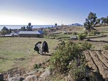 Lantlig plats för peruansk ö Arkivbild