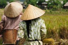 lantlig plats vietnam Royaltyfri Fotografi