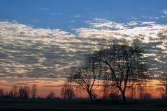 lantlig siberian solnedgång för liggandenatur Arkivfoto