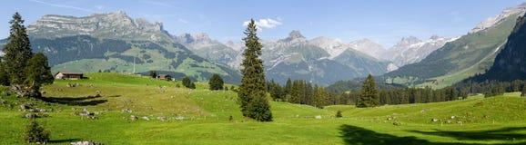 Lantlig sikt över Engelberg på Schweiz Royaltyfri Bild