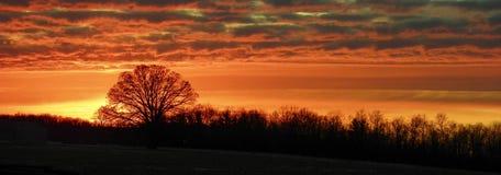 lantlig solnedgång Arkivbild