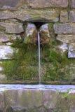 lantlig springbrunn Arkivbild
