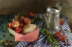 Lantlig stilleben med mogna persikor Fotografering för Bildbyråer