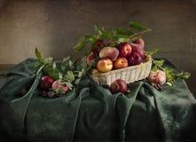 Lantlig stilleben med mogna persikor Royaltyfri Fotografi