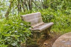 Lantlig stol på botaniska trädgården, Guayaquil, Ecuador Royaltyfria Bilder