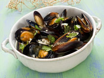 Lantlig svart mussla i sås för vitt vin för vitlök Royaltyfri Fotografi