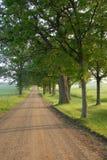 Lantlig sydlig Michigan väg Royaltyfri Foto
