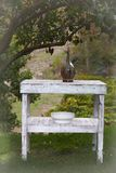 Lantlig tabell under ett träd Royaltyfri Bild