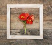 Lantlig träbakgrund för fyrkantig vit för Alstromeria för ram orange Copmosition för blomma bukett ordning Fotografering för Bildbyråer