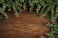 Lantlig träbakgrund för jul med vintergröna filialer royaltyfria foton