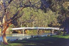 Lantlig träbro över floden i skog royaltyfri fotografi
